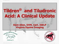 Tildren and Tiludronic Acid: A Clinical Update